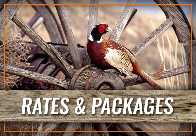 Wagon Wheel Ranch Rates & Packages