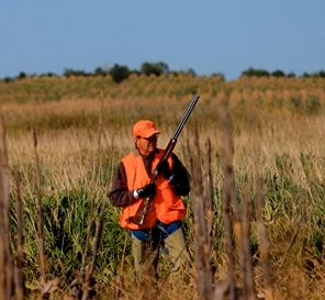 Our Pheasant Hunting Rates
